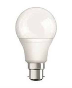 20W Light Bulb - Focus  (103006)