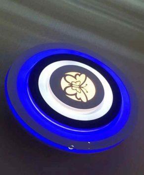New Design Ceiling light- Bulb (105050)
