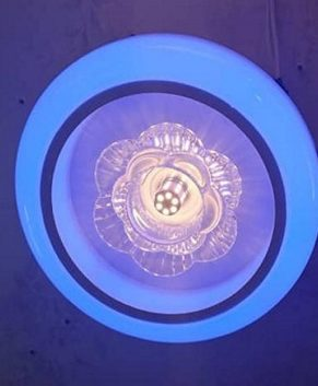 New Design Ceiling light- Bulb (105006)