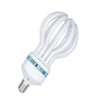 105W Light Bulb,LOTS CFL- Focus/XBZ (103063)
